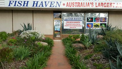 AUSTRALIA'S LARGEST AQUARIUM, REPTILE & CRITTER STORE