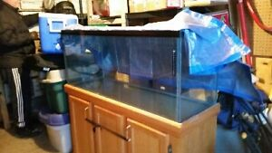 2 - 55 Gallon Fish Tank with stand & Lites