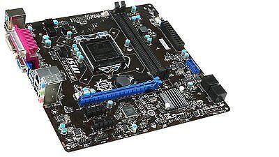 Motherboard: MSI H81M-P33