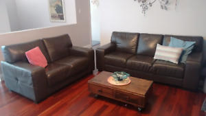 Nick Scali 2 & 3 seater leather lounge Sutherland Sutherland Area Preview