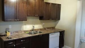 BRIGHT BEAUTIFUL NEWLY RENOVATED - DOWNTOWN - 2 BDRM WITH OFFICE