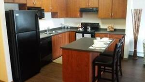 Modern suites and great incentives at Elizabeth Gardens! Edmonton Edmonton Area image 11