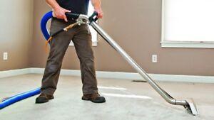 Carpet & Upholstery-Free Stain Remover, Sanitising & Deodorising Mount Annan Camden Area Preview