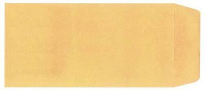 Blank License Plate Envelopes - Moist Seal 100 Per Box