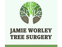 Bristol and South West Tree Surgery