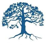 Blue Tree Accessories