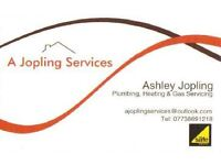 Plumbing, Heating & Gas Servicing (plumber)