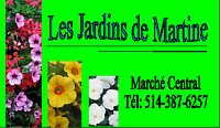 Vente de fleurs/emploi d'été