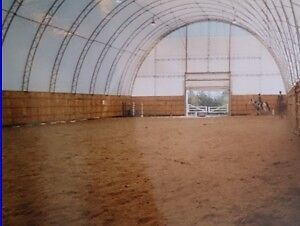 indoor and outdoor board for your horse