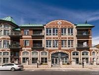 Water front loft in Lachine canal, parking (Lachine)