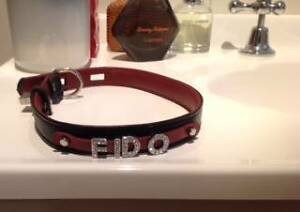 Dog Collar for pet or person Moss Vale Bowral Area Preview