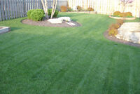 Landscaping installation grass laying / Pose de tourbe, pave uni