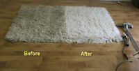 2 bedroom Steam Carpet Cleaning+Deodorization+Stain removal*-$79