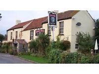 Chef for successful country pub under new management.