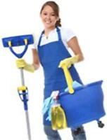 $25/h Cleaning - So Affordable You Can't Not Hire Us