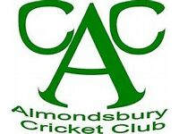 Cricketers wanted in North Bristol