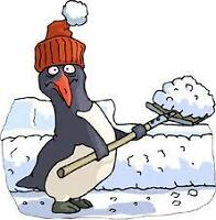 Book your snow removal needs now!