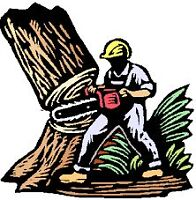 TREE TRIMMING - REMOVAL SERVICE