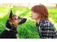 If you have experience with animals Pawshake are looking for reliable pet sitters in Kilburn!