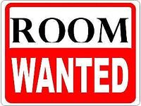 URGENT: Room to rent wanted in Aviemore area!
