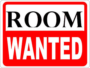 *ADULT FEMALE LOOKING TO RENT A ROOM*