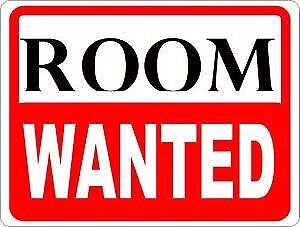 Room Wanted Strathfield Strathfield Area Preview