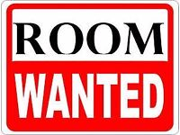 Single/Double Room Wanted