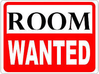 Wanted: Large Double Room in Pref Owner Shared House in Northern Exeter for Professional Male