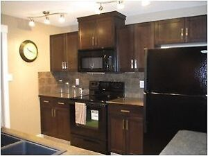 Executive Furnished Condo - West Side