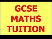 MATHS GCSE TUTOR + PHYSICS, ELECTRONICS & IT