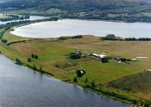 HUGE beautiful 60 acre Hobby Farm with a magnificent view!