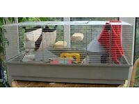 Guinea Pig/ Rabbit indoor cages for sale