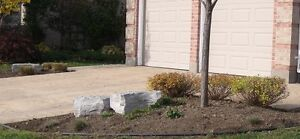 Spring Clean Up - FullYard Services - Quality & Affordable Price London Ontario image 3