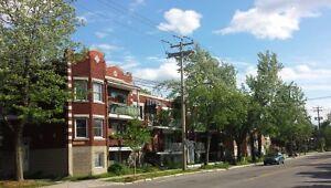 Rosemont/La-Petite-Patrie Duplex et triplex abordables