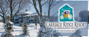 TIMESHARE FOR SALE CARRIAGE HILLS