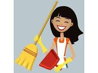 Domestic cleaning and housekeeping