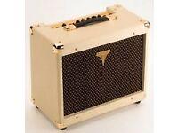 Epiphone acoustic regent 30W amp