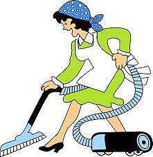 domestic house cleaner / professional experienced honest cleaner Brentwood Melville Area Preview