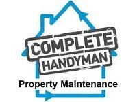experienced handyman +van. No job too small. best rates