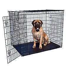 Dog Crate Brassall Ipswich City Preview
