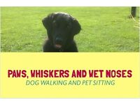 Dog Walker and Pet Sitting Services - Paws, Whiskers and Wet Noses