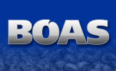BOAS CLEANING SERVICES AND BUILDING MAINTENANCE Perth Region Preview