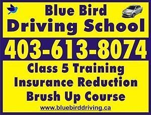 Blue Bird Driving School/Brush up