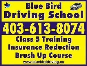 Driving school/lessons➡️425$