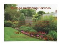 Morlage Gardening Services, Reliable, Affordable, Professional