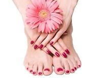 Shellac Manicure and Shellac Pedicure for only $65!