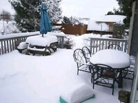 Deck snow removal services!!!
