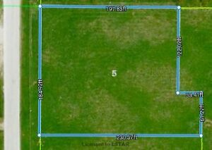 Build Your Dream Home on this Large Lot in the Town of Brussels London Ontario image 1