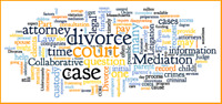 Divorce/Family Lawyers