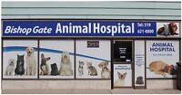 Low Price @ Bishop Gate Animal Hospital